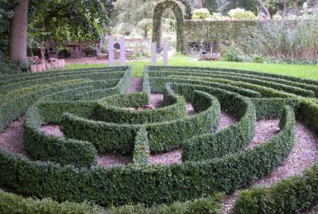 Der Kreativität freien Lauf lassen - unser Buchbaum-Labyrinth